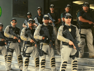 PDEA Agents 2019