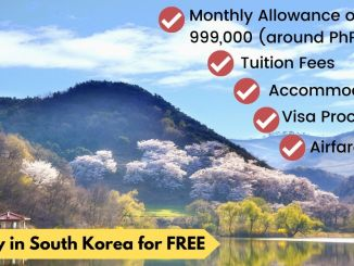 KOICA Scholarship 2020