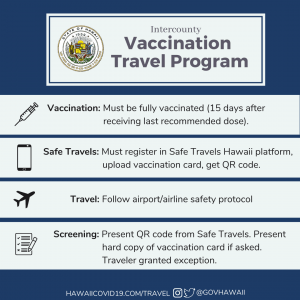 A summary of the Vaccination Travel Program steps.