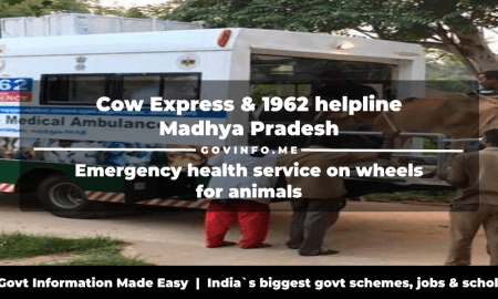 Cow Express & 1962 helpline