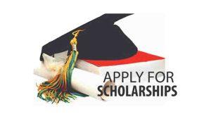 DHE Combined Merit Scholarship 2020