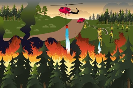 forest fire response