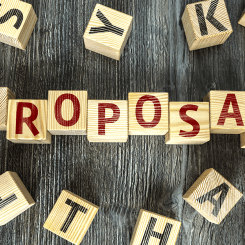 Proposal Development