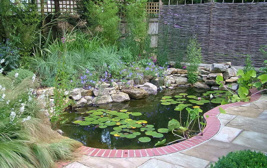 Garden Pond Ideas Natural Wildlife
