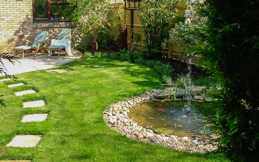 Small Wildlife Pond Design