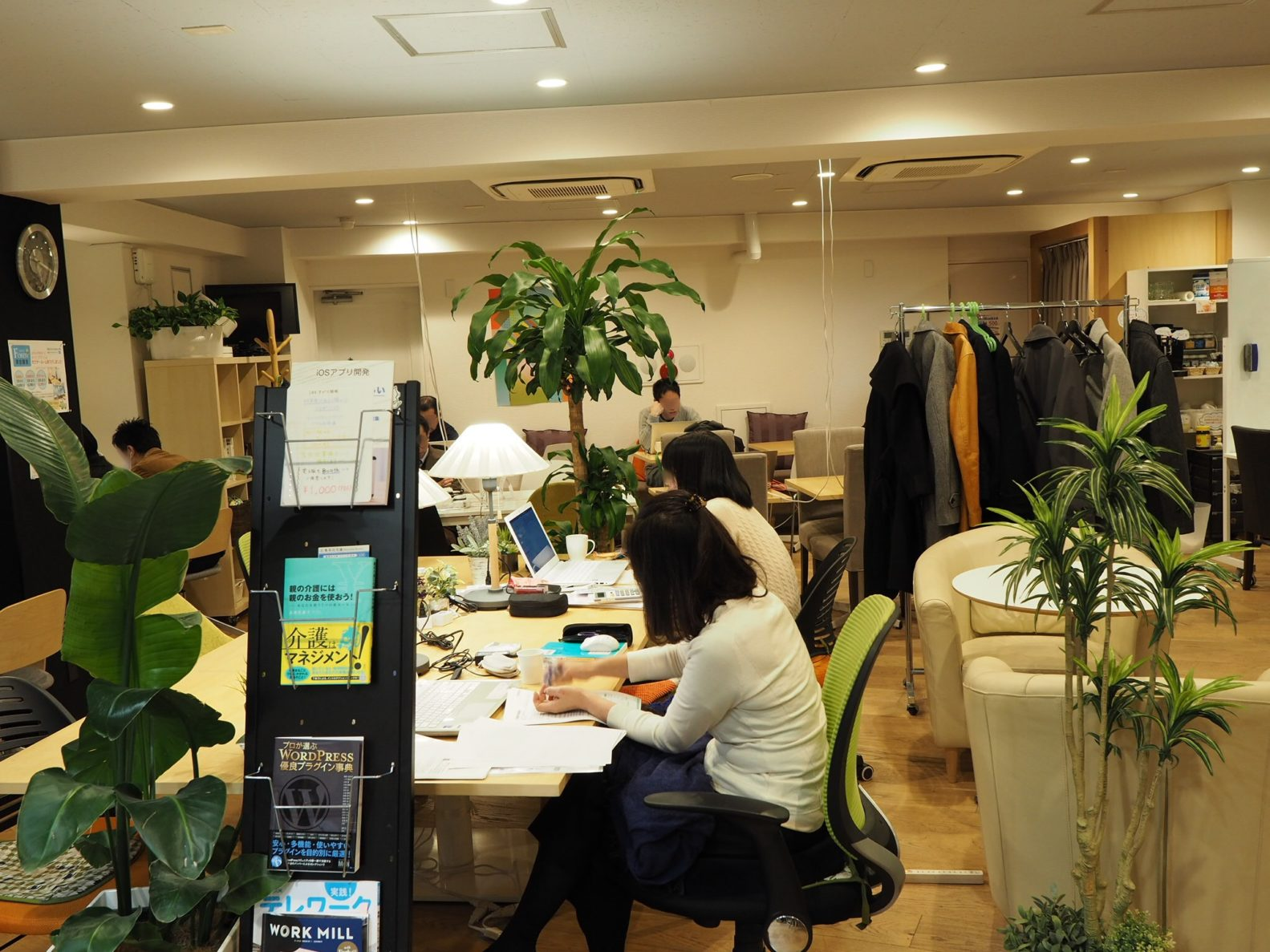 OPEN OFFICE FOREST