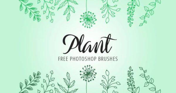 Plant Photoshop Brushes