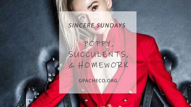 sincere-poppy