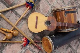 Los instrumentos del tamunangue
