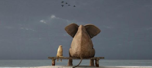 Ungleiche Beziehungen Elefant sitzt mit Hund am Strand und schaut aufs Meer