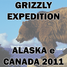 Grizzly Expedition Alaska Canada logo