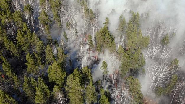 Norme piano di Protezione Civile per rischio incendio boschivo