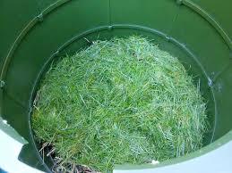 GPSMX compostero Cubriendo el nuevo desperdicio