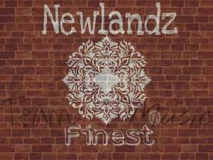 Newlandz Finest - Baleka Wena (Gqom Mix)