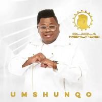 Dladla Mshunqisi - Wangibamba (feat. Prince Kaybee & Nokwazi)