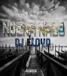 Dj Floyd - Ngena Nabo