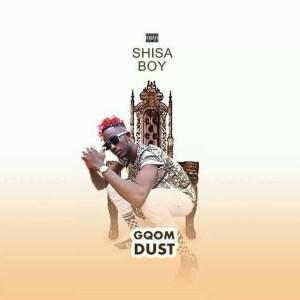 Shisaboy - S'yabhedisa (feat. Zulu Naija & Elevatorz)