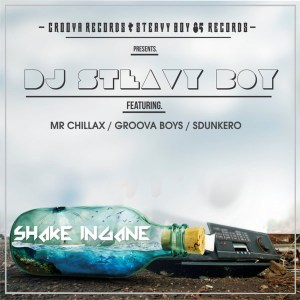 DJ Steavy Boy Ft. Mr. Chillax, Groova Boys & Sdunkero - Shake Ingane
