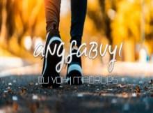 Dj Vox & MaDrops - Angisabuyi