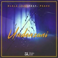 Dlala Lazz ft. Peace - Undenzani