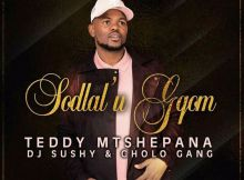 Teddy Mtshepana x Dj Sushy & Cholo GanG - Sodlal' u Gqom