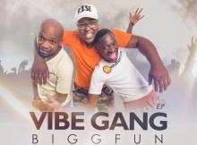 BiggFun & Ed Harris - Vibe Gang Iphakathi