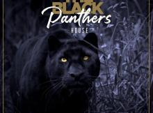 Pro-Tee & Biblos - The Black Panther's House (Album)