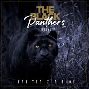 Pro-Tee & Biblos - Black Panther