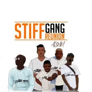 Stiff Gang - The Stiff Gang Reunion (Album)