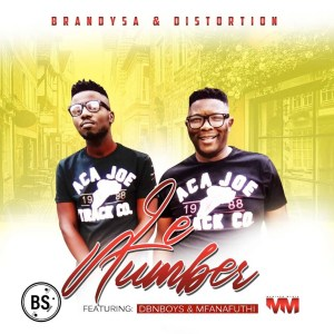 BrandySA & Distortion - Le Number (feat. Mfanafuthi & DBN Boyz)