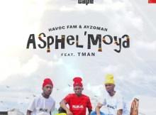 Havoc Fam & Ayzoman - Asphel'moya ft. T-man