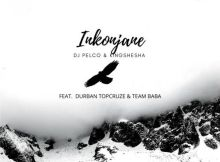 Dj Pleco & Kingshesha - Inkonjane (feat. Durban TopCruze & TeamBaba)