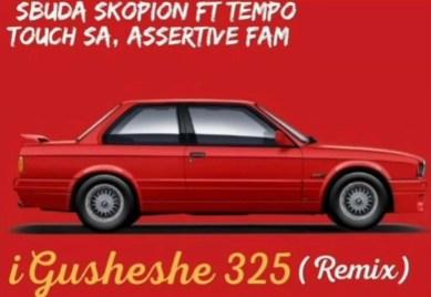 Sbuda Skopion ft. Tempo, Touch SA & Assertive Fam - iGusheshe (remix)