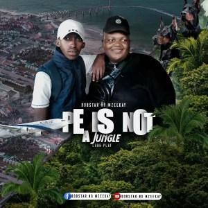 Bobstar no Mzeekay - PE Is Not A Jungle LP