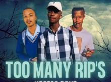 Hectic Boyz - Too Many RIP's