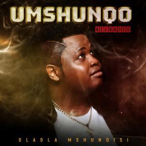Dladla Mshunqisi - Owamabomu (feat. DJ Lag)