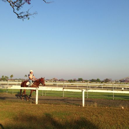 The Grafton Racetrack is across the road from Sharlee and Paul's place