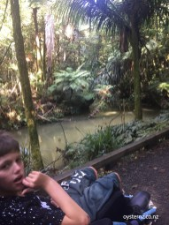 Finlay and swamp