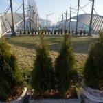 """Najavljeni protesti protiv podizanja spomenka Caru Lazaru i uzgradnje """"Sunčane doline"""""""