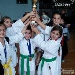 Одлични резултати наших младих каратиста у Лесковцу