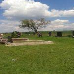 Јавне службе Општине Грачанице уређују гробља и јавне површине