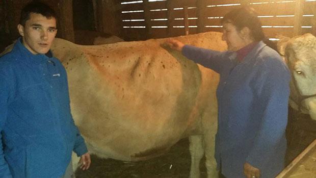 Мајци шесторо деце из Сувог Лукавца стиже нови трактор