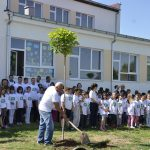 Саднице дрвета каталпе за Светски дан животне средине