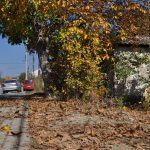Михољско лето до средине новембра
