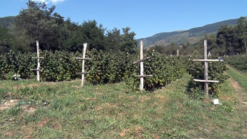 Успешна сезона за малинаре у општини Штрпце