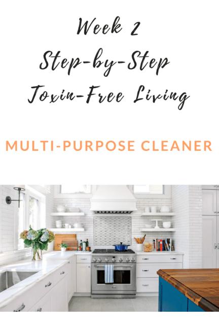 Step-by-Step Toxin-Free Living Week 2 Multi-Purpose Cleaner (2).png
