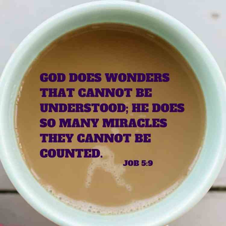 Job 5:9