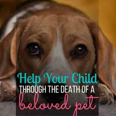 death of pet