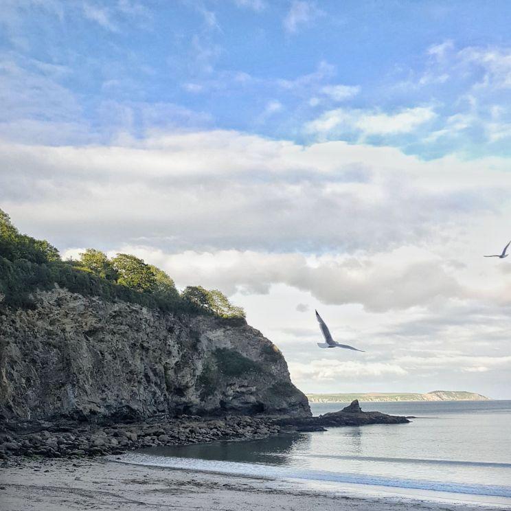 Cornwall Graceful Blog