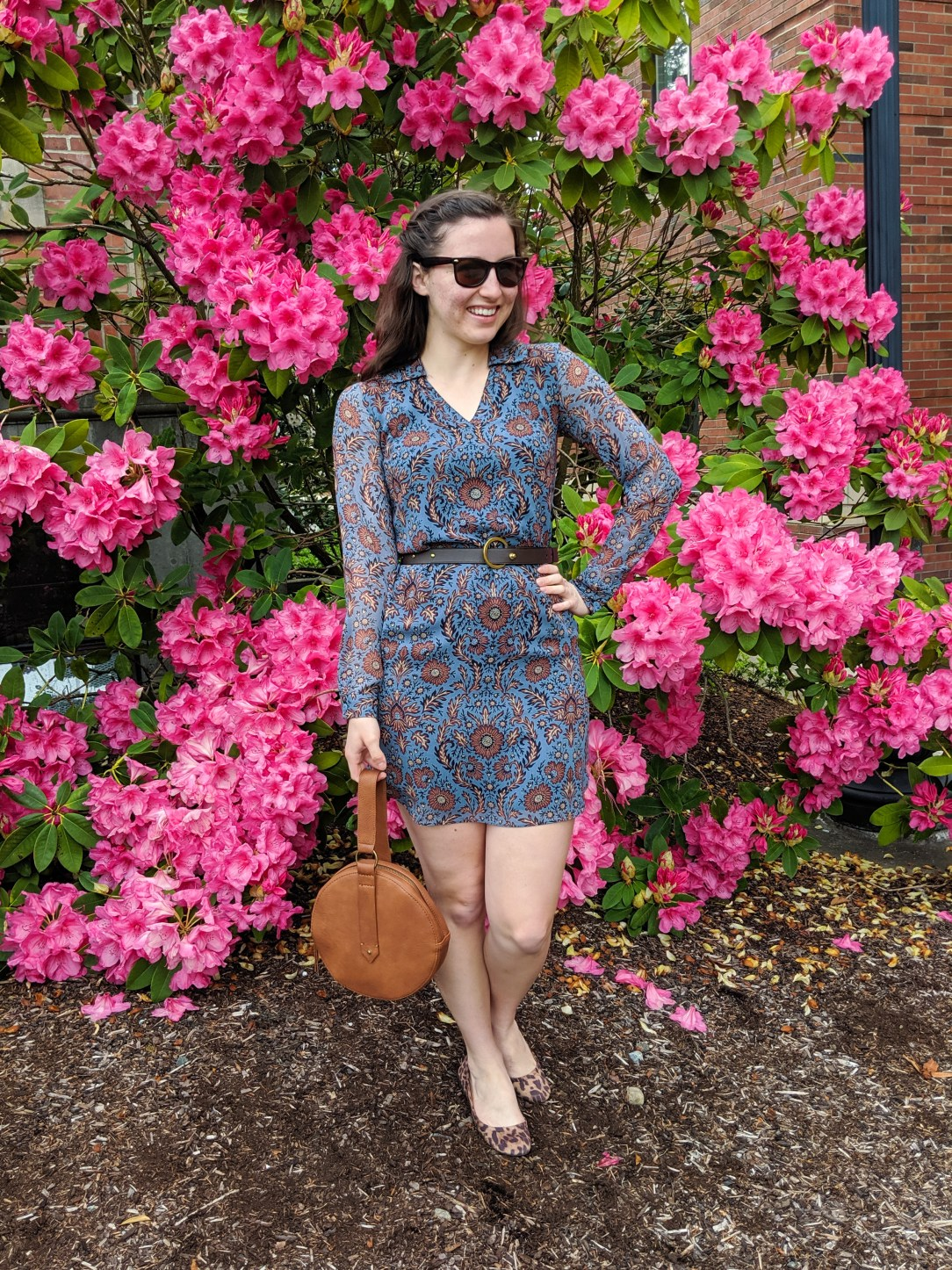 brown and blue patterned Cabi dress, brown circle purse, leopard flats